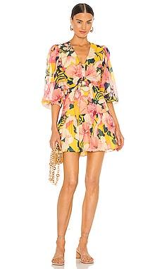 Zora Short Dress Alexis $363