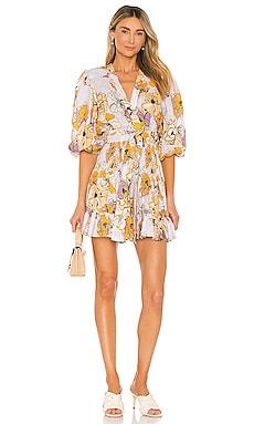 Pasina Dress Alexis $398 NEW