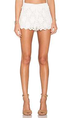Alexis Niklas Crochet Shorts in White