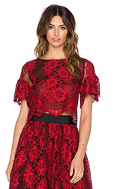 Alexis Piero Sheer Lace Crop Top in Red Lace