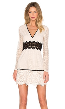 Bardot Bella Lace Dress in Limestone