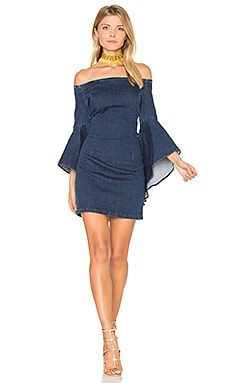Lucinda Denim Dress in Indigo