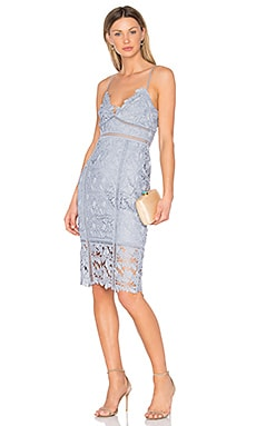 Botanica Lace Dress in Dusty Blue
