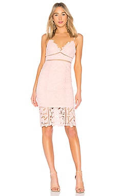 Botanica Lace Dress Bardot $139