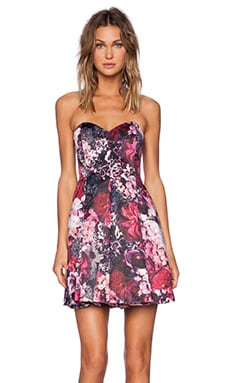 Bardot Winter Floral Dress in Winter Floral