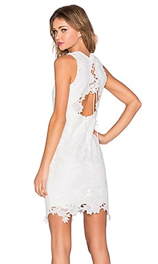 Bardot Rosette Lace Dress in Ivory