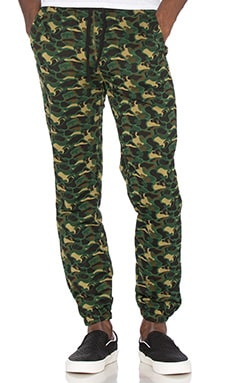 Billionaire Boys Club Camo Knit Pant in Camo