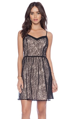 Jack by BB Dakota Esther Lace Dress in Black