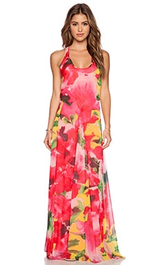 BB Dakota Deklyn Maxi Dress in Multi