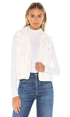 Aint It Fuzzy Faux Fur Vest BB Dakota $48