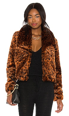 Leopard Queen Jacket BB Dakota by Steve Madden $38 (FINAL SALE)