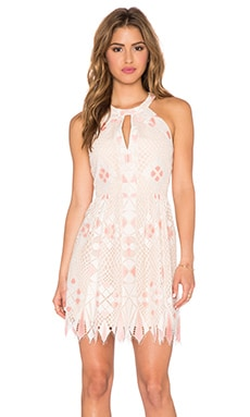 BCBGMAXAZRIA Megyn dress in White Combo