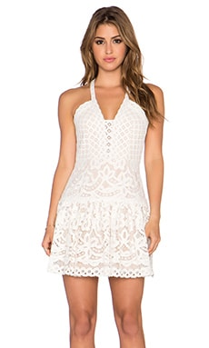 BCBGMAXAZRIA Lace Dress in Jasmine White Combo