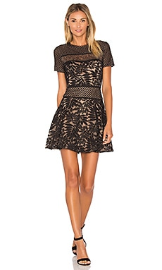 Lace Mini Dress in Black Combo