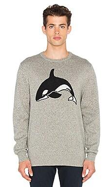 Killa Whale Sweater