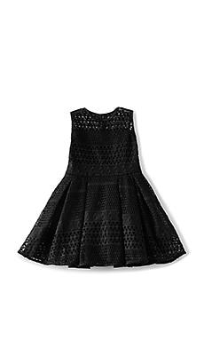 Paneled Mesh Dress