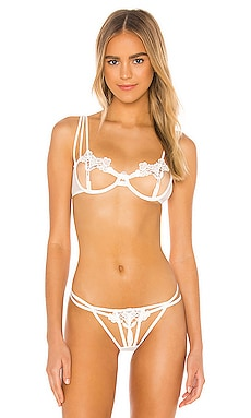 Nova Bra BLUEBELLA $64 BEST SELLER