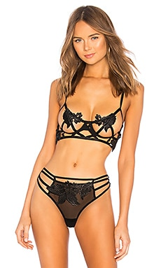 Nikita Bra BLUEBELLA $64 BEST SELLER