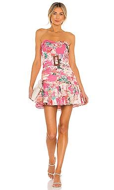 X REVOLVE Sage Dress HEMANT AND NANDITA $368