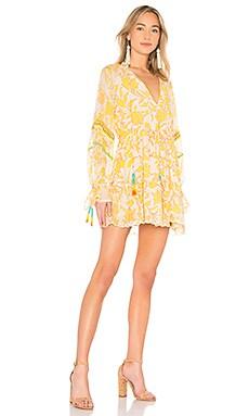 Clarion Mini Dress