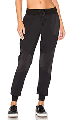Picture Perforated Sweatpant in Black