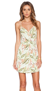 BCBGeneration Knit Cocktail Dress in Lime Combo