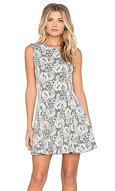 Bishop + Young Lace Skater Dress in Grey