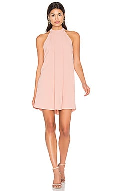 Cameron Dress in Blush