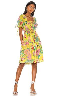 Fox Glove Mini Dress Banjanan $245 NEW ARRIVAL
