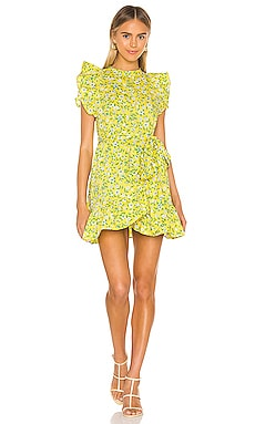 Audrey Mini Dress Banjanan $325