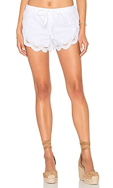 BLANKNYC Lace Short in Strip Down