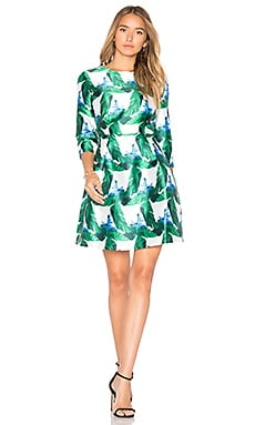 Fit & Flare Dress in Green Print