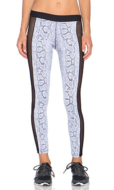 Blue Life Snake Mesh Legging in Snake