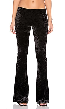Blue Life Walk This Way Pant in Black Velvet