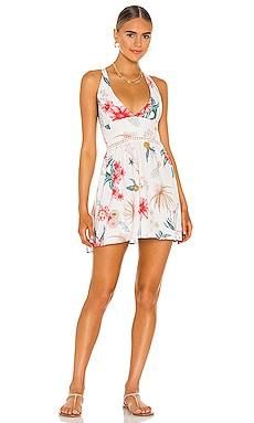Clara Dress BOAMAR $108