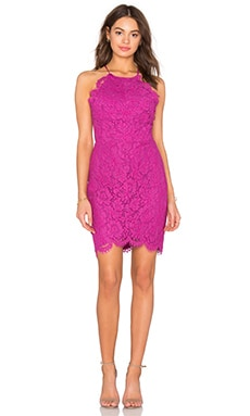 Bobi BLACK Mixed Chiffon Lace Bodycon Dress in Berry