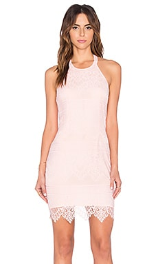 BLACK Lace Mini Dress in Blush