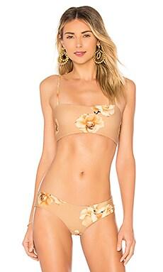 Hezeus Bikini Top BOYS + ARROWS $23 (FINAL SALE)