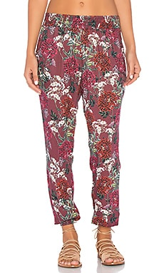 Autumn Pant in Maroon Floral