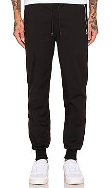Black Scale Asip Sweat Pants in Black