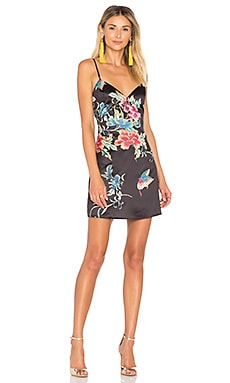 Shaw Button Cami Dress in Dark Floral