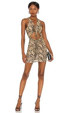 Levi Dress By Dyln $79