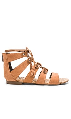 Circus by Sam Edelman Gibson Sandal in Saddle