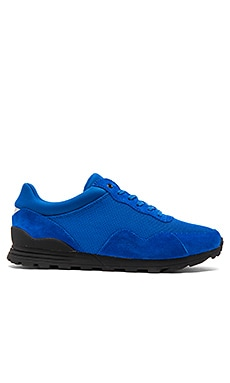 Clae Hoffman in Royal Blue Suede Mesh