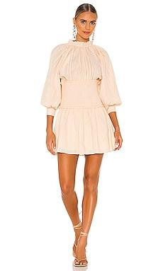 Hayden Mini Dress Cleobella $198 NEW