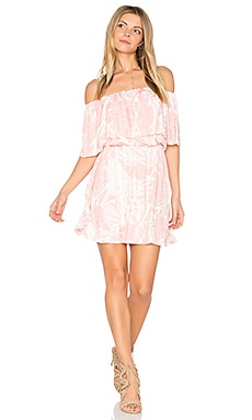 Della Dress in Pink Palm