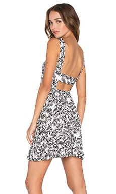 Clayton Tori Dress in Black Sunflower