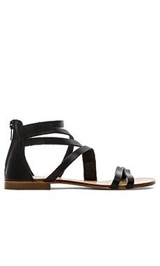 cocobelle Mikonos Sandal in Black