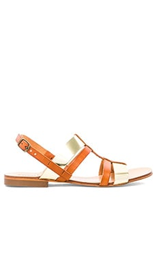 cocobelle Trevi Sandal in Brown