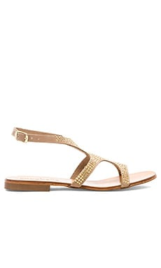 cocobelle Venus Sandal in Gold